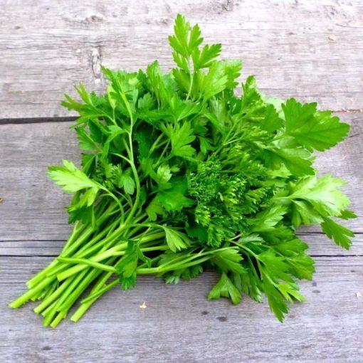 bunch-parsley