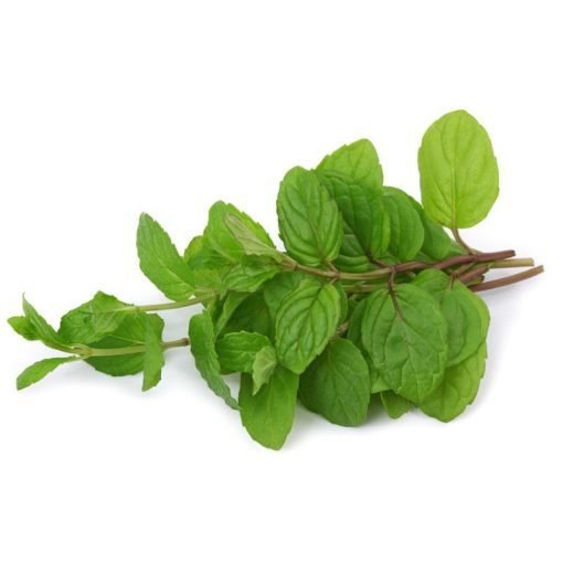 herbs-unlimited-mint-roots-fruits-the-harrogate-greengrocer.jpg