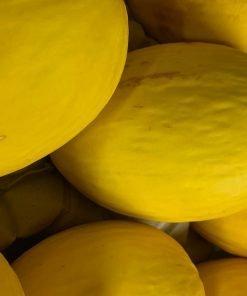 img-4751-roots-fruits-harrogate-scaled-1.jpg