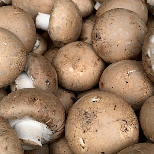BROWN-CREMINI-MUSHROOM___RootsFruits_Harrogate_Images