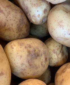 IMG_4764_roots-fruits-harrogate