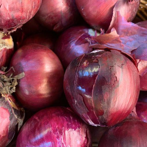 IMG_4771_roots-fruits-harrogate
