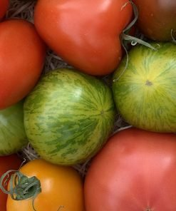 SPECIAL-TOMS___RootsFruits_Harrogate_Images