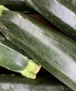 courgette-rootsfruits-harrogate-images