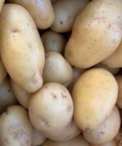 img-4766-roots-fruits-harrogate